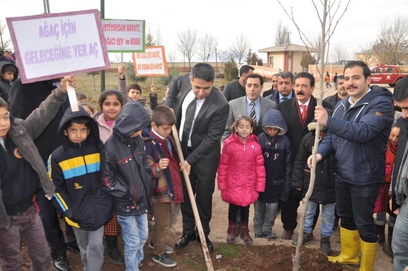 İlçe Kaymakamımız Mehmet Öztürk fidan dikimi etkinliğine katıldı