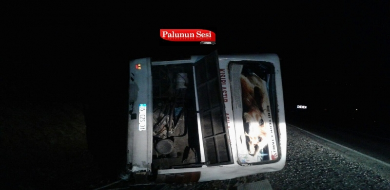 Palu`da Freni Tutmayan Araç Kaza Yaptı