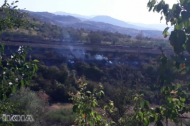 Palu`da Yangın 260 dönümlük araziyi küle çevirdi